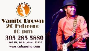 20 feb vanito brown